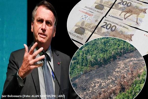 Desmatamento da Amazônia brasileira dispara 67% em maio e esvazia promessas de Bolsonaro